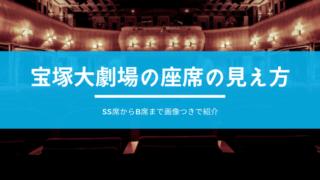 宝塚大劇場の座席の見え方・タイトル