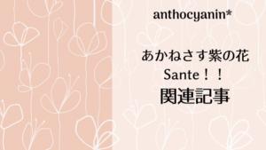 花組公演「あかねさす紫の花/Sante!!」関連記事